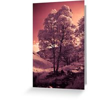 Walking in the Dream Wood - The Hill Greeting Card