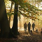Autumn day in Forrest by Janone