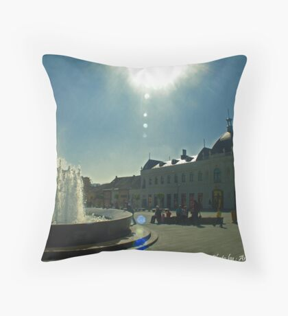 Barok Tuzla Throw Pillow