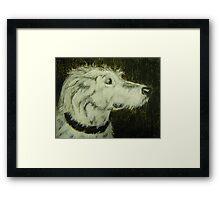 Lovely Mr Finn Framed Print