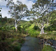 Onkaparinga Gorge (Porosa track) South Australia by rjpmcmahon