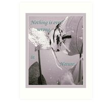 """""""Nothing is ever wrong in Nature..."""" Art Print"""