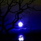 Moon Rise? by Digby