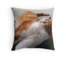 Playful Nature Throw Pillow