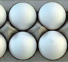 eggs by Amy Greenberg