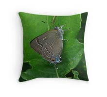 Butterfly In Knee Socks Throw Pillow