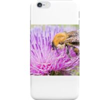Scottish Bumble Bee iPhone Case/Skin