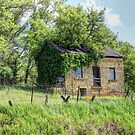 Cottage on the Hillside by wiscbackroadz