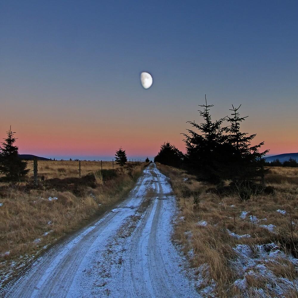 Winter Moon by Panalot