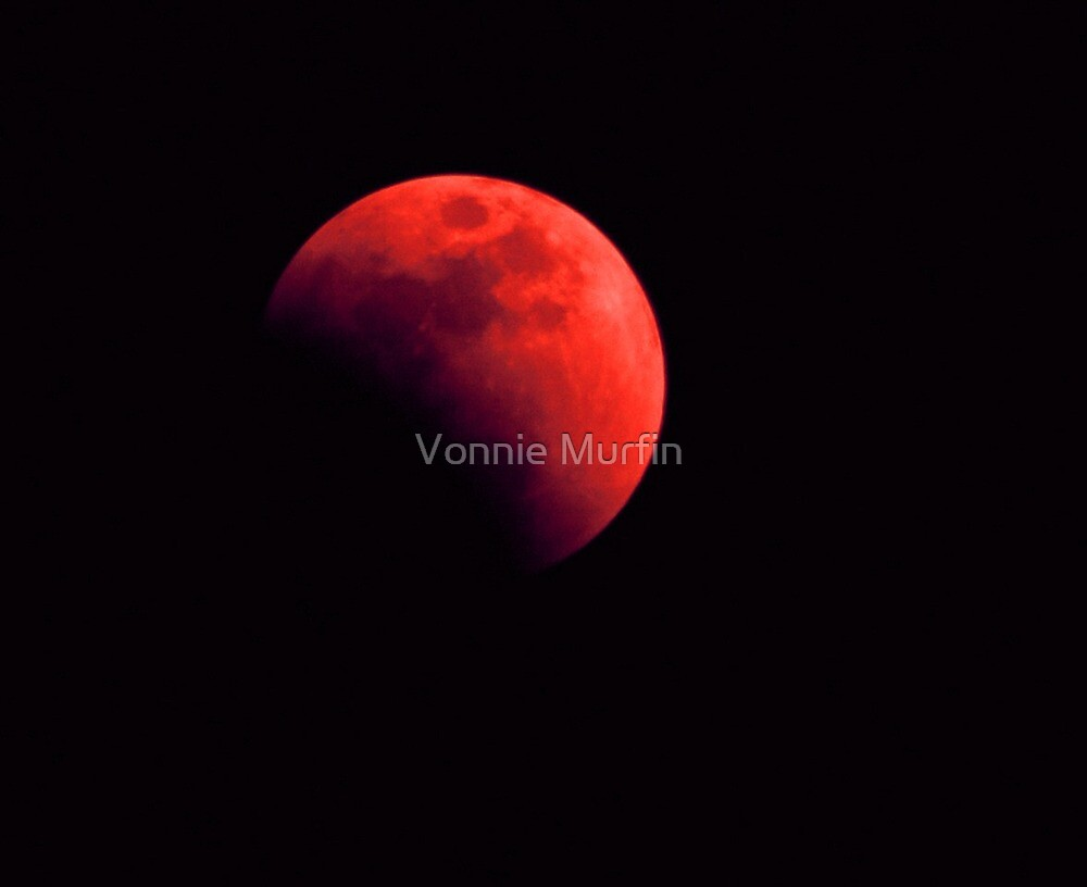 Eclipse  by Vonnie Murfin