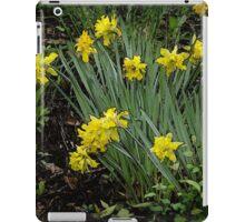 Daffodils of days gone by iPad Case/Skin