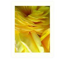 Rose Petal Abstract no.4 Art Print
