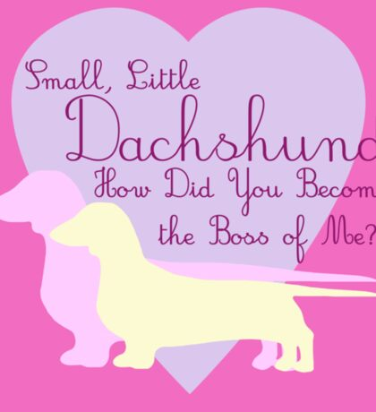 """""""Small, Little Dachshund How Did You Become the Boss of Me?"""" Doxie Weenie Dog Pink Purple Girly Girlie Silhouette  Sticker"""