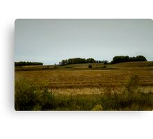 Canadian Countryside Canvas Print