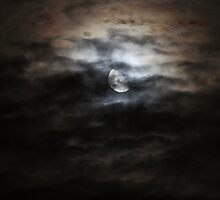 Night Light by Anima Fotografie