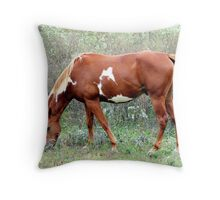 Grazing in Wild flowers Throw Pillow