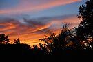 Summer Swirl Sky by Ainsley Kellar Creations