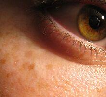 The World in my Eye by Matt Langton
