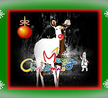Merry Christmas! by Greeting Cards by Tracy DeVore