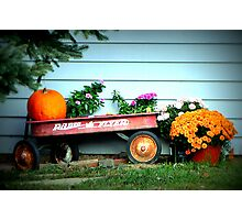 The Old Radio Flyer Photographic Print