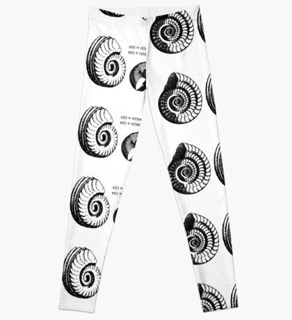 Math Spiral Shells Leggings
