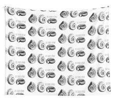 Math Spiral Shells Wall Tapestry