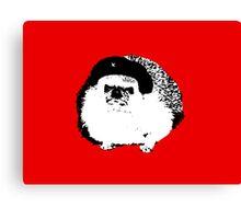 Che Erizo!(Hedgehog!) Canvas Print