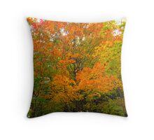 Orange Octoberfest Throw Pillow