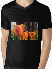 Orange and Yellow Tulips Mens V-Neck T-Shirt
