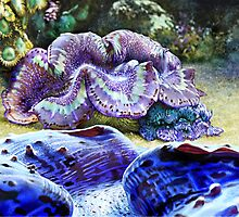 SMALL GIANT CLAM by DilettantO