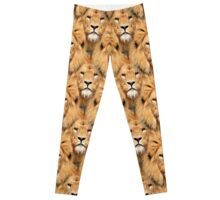 Lion Face Pattern Leggings