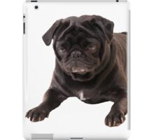 Funny Sleeping Black Pug iPad Case/Skin