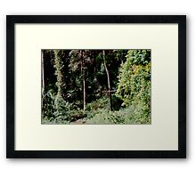 The Bush -  a Photomatix HDR experiment. Framed Print