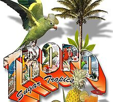 welcome to tropo by redboy