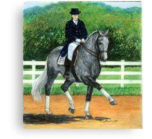 Belgian Warmblood Horse Portrait Canvas Print