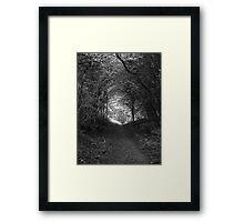 Tweed Woods Framed Print