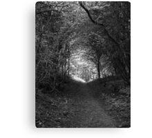 Tweed Woods Canvas Print