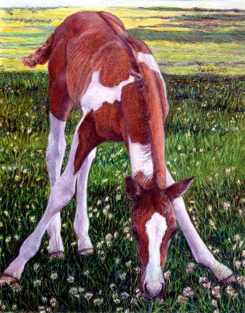 Future Champion Paint Foal Horse Portrait by Oldetimemercan