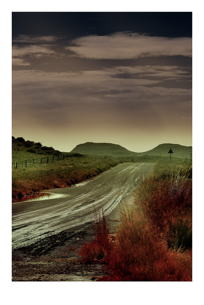 Somewhere going Nowhere by Nico  van der merwe