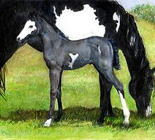 Grulla Paint Mare and Foal Horse Portrait by Oldetimemercan