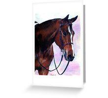 Quarter Horse Hunter Under Saddle Portrait Greeting Card