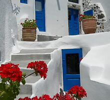 Blue doors by Dorianne Catania
