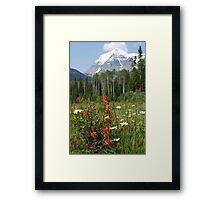 Wildflower Meadow at Mt. Robson Framed Print