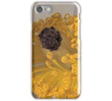 243 Mojave Prickly Poppy iPhone Case/Skin