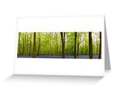 Amazing Bluebell Wood - Panorama Greeting Card