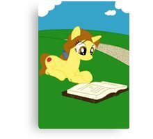 Pony Belle Canvas Print