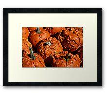 Bumpy Pumpkins Framed Print
