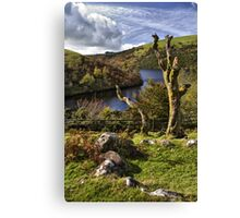 Meldon Reservoir, Dartmoor National Park, Devon Canvas Print