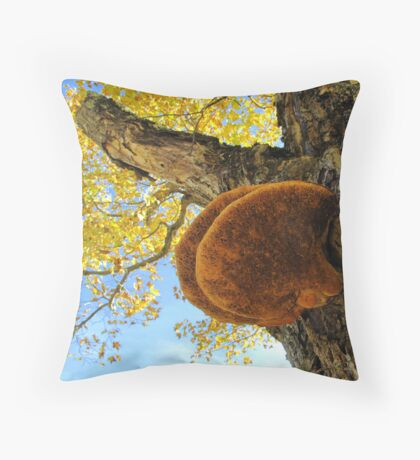 Shelf Mushroom. Fungus Throw Pillow