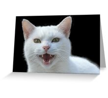 'Vampire cat, He Vants Blood!! Bwhahah....' Greeting Card